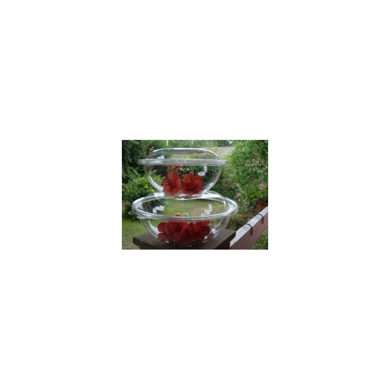 saladier 2 25 l transparent avec couvercle par 2 saladiers coupelles adiserve. Black Bedroom Furniture Sets. Home Design Ideas