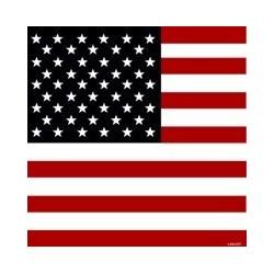 Serviette cocktail papier jetable drapeau américain, en intissé par 25x25 cm par 20