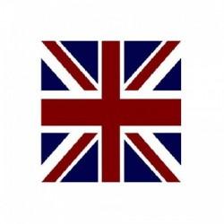 Serviette jetable drapeau anglais 40 cm par 20