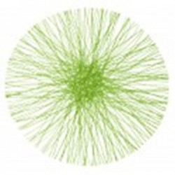 Set de table rond vert en sinamay 34 cm par 4