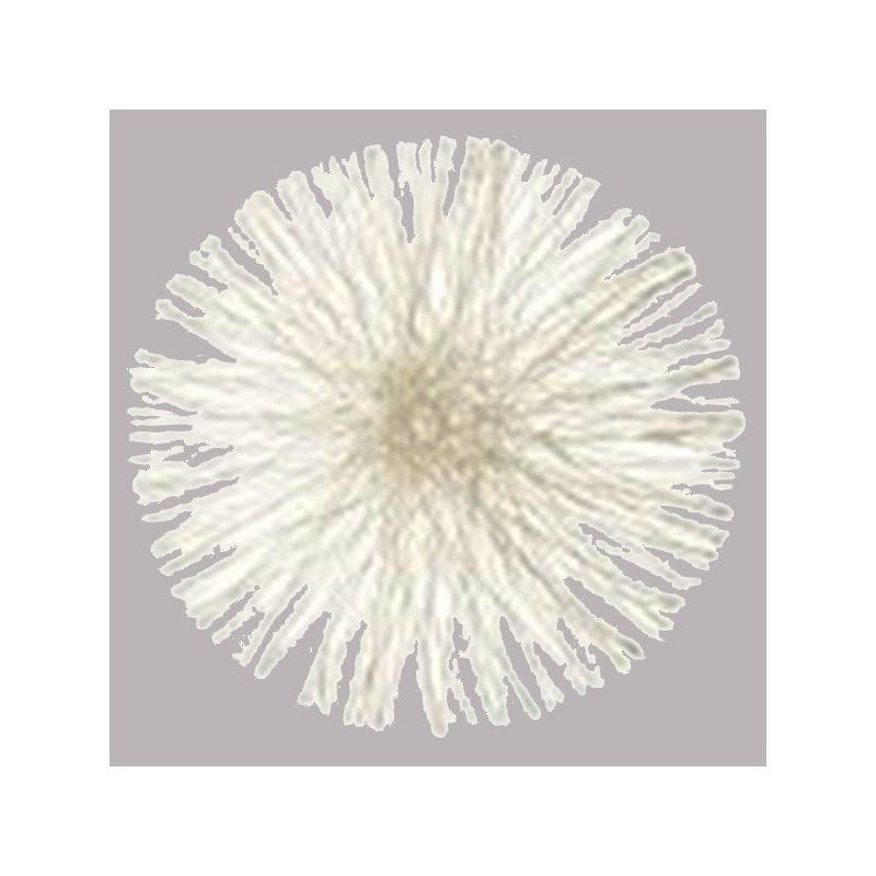 Set de table rond blanc en sinamay 34 cm par 4 sets de for Set de table rond blanc
