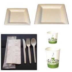 Pack carré 2 vaisselle écologique en canne à sucre et biodégradable
