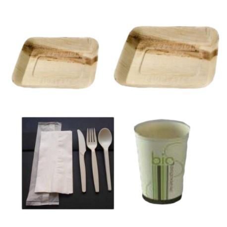 Kit Vaisselle palmier biodégradable pour 25 personnes