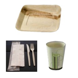 Pack bio simple carré en palmier biodégradable et compostable 25 personnes