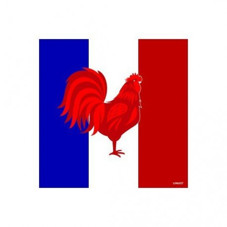 Serviette cocktail drapeau français, papier jetable intissé 25x25 cm par 20