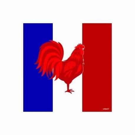 Serviette cocktail en intissé drapeau Français 25 cm par 20