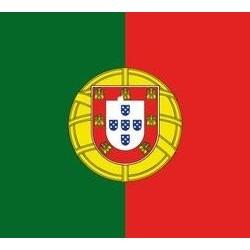 Serviette cocktail jetable drapeau portugais 25x25cm cm par 20